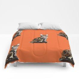 The Royal Safir Comforters