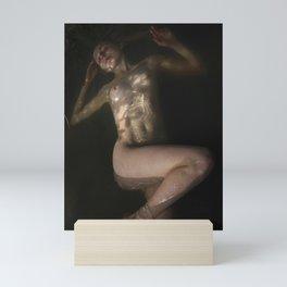 _DSC1987 Mini Art Print