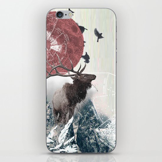 The Nature of Analysis iPhone & iPod Skin
