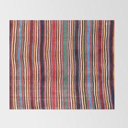Qashqa'i Antique Fars Southwest Persia Striped Kilim Print Throw Blanket