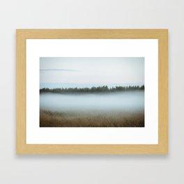 Misty forest 3/5 Framed Art Print