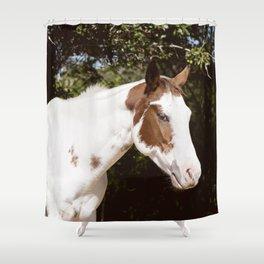 Quiet Splash Shower Curtain