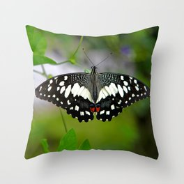 Butterfly Large Throw Pillow