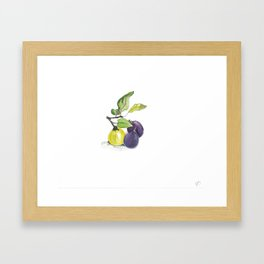 2 Figs and a Quince Framed Art Print