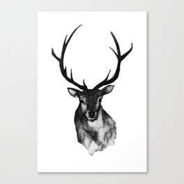 Woodland Animals Collection | Stag in Black and White Canvas Print