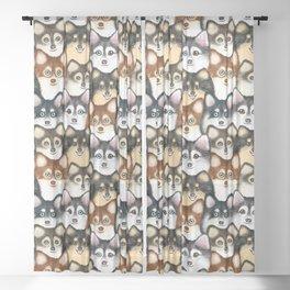 Pomsky Pattern Sheer Curtain