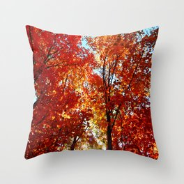 Sun Rays in the Leaves Throw Pillow