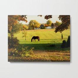 The Autumn Horse Metal Print