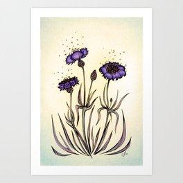 Mystery Garden: Violet cornflower in a yellow midday haze Art Print