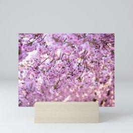 Cherry Blossom Flowers Mini Art Print