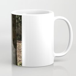 Toho path to forest shrine Coffee Mug