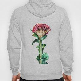 Pink Celosia Hoody