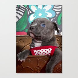 Sweet Blue-Eyed Pitbull Puppy Girl in a Red and White Polka Dot Dress Canvas Print
