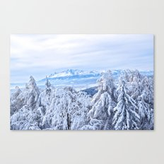 White out #mountains #winter Canvas Print