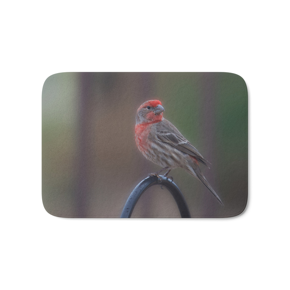 Pretty Bird - House Finch Bath Mat by alaskanmommabear (BMT6660743) photo