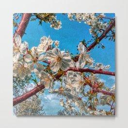It´s Spring 01 Metal Print