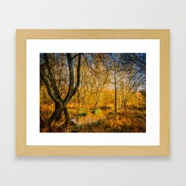 Kintbury Marshes Framed Art Print