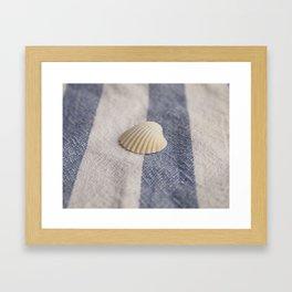 Shell 2 Framed Art Print