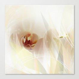 Phalaenopsis Canvas Print