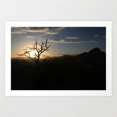 Skimpy Tree Glows Art Print