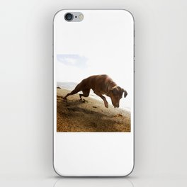 Dogs with the game face on .45 iPhone Skin