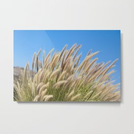 Foxtails on a Hill Metal Print