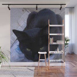 Jinx in the Box Wall Mural