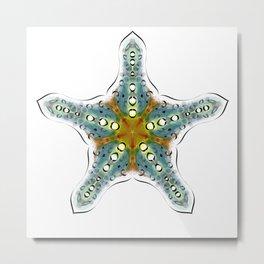 Fishtales: Starfish 4 Metal Print