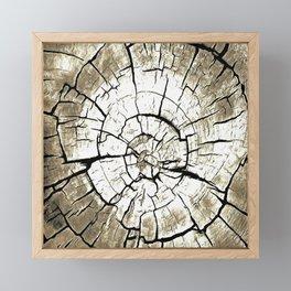 Tree Stump In Pale Grey Monotone Framed Mini Art Print