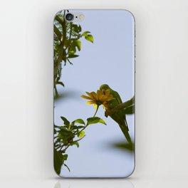 Birds from Pantanal Periquito-de-encontro-amarelo iPhone Skin