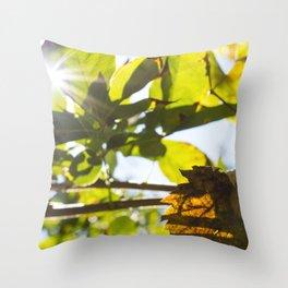 Snail's house on the leaf at autumn. Throw Pillow