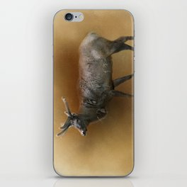 Rocky Mountain Elk iPhone Skin