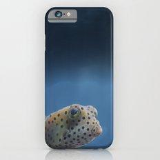 Yellow Boxfish Slim Case iPhone 6s
