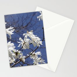 Star filled sky (Star Magnolia flowers!)      Edit Stationery Cards