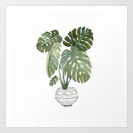 Monstera Deliciosa Plant Art Print