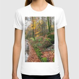 Autumn Forest River T-shirt