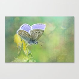 Enjoy Spring... Canvas Print