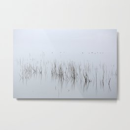Wid Ducks. Foggy Sunrise At The Lake Metal Print