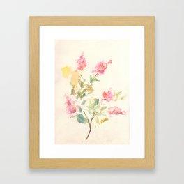 Crape Myrtle Framed Art Print