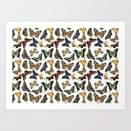 Vintage Butterflies   Butterfly Pattern   Multi-colored   Art Print