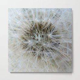 Make a Wish - Dandelion Metal Print