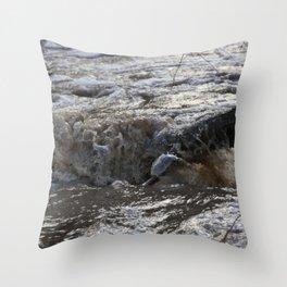 Flood Branch Throw Pillow