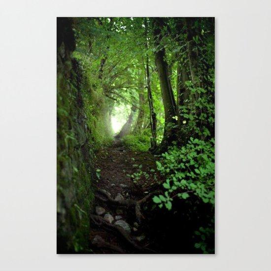 black forest 2 Canvas Print