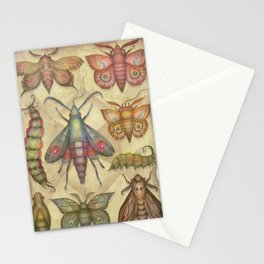 Entomology Tab. V Stationery Cards
