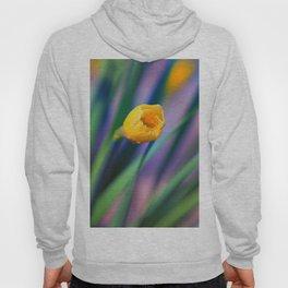 Itsy Bitsy Daffodil Bloom Hoody