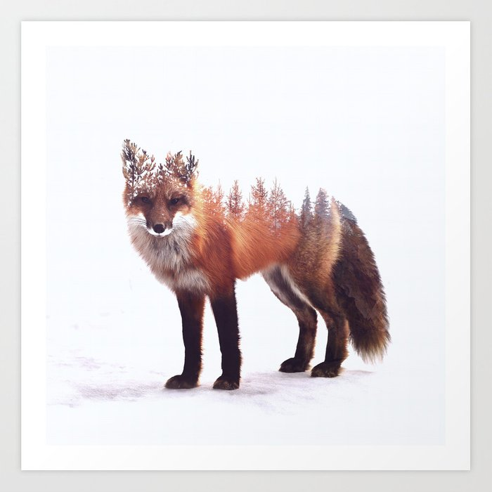 Fox Art Print By Pegessert Society6