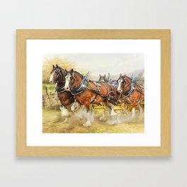 Clydesdales In Harness Framed Art Print