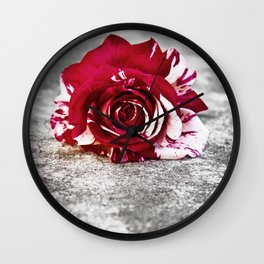 Variegated Rose on Concrete Wall Clock