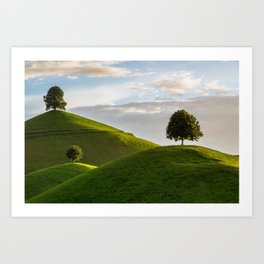 One Tree Hills, Ireland, Springtime, Emerald Isles Photograph Art Print