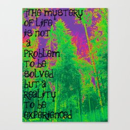 Mystery of Life Canvas Print